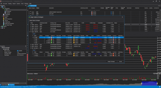 Options trading journal screen
